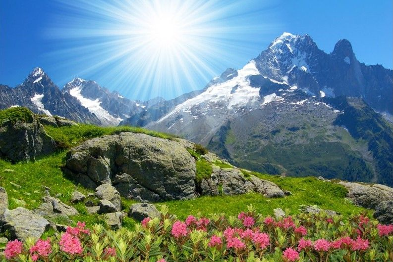 Image result for summer alps