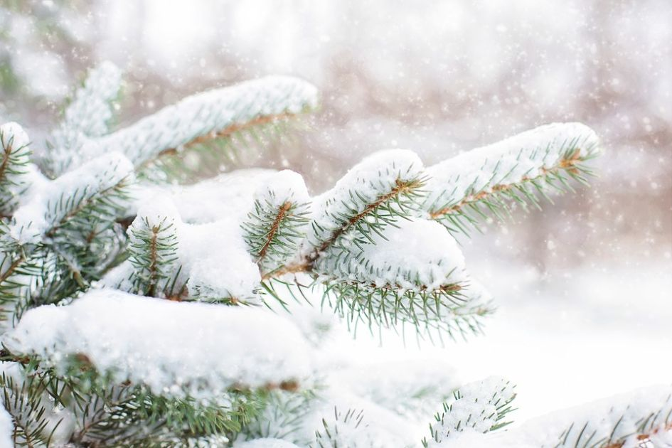 Christmas in Morzine, Morzine Christmas, Christmas in Portes du Soleil, Luxury ski chalets for Christmas in Morzine